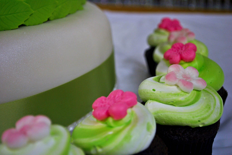 Pink and Green Cake